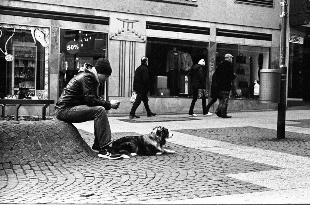 Dog guarding his master in Frankfurt