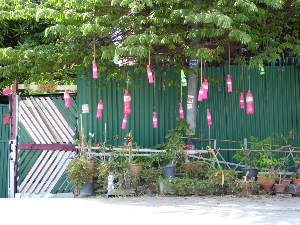 Pink bottles on a tree
